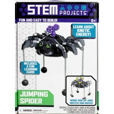 STEM Projects Jumping Spider